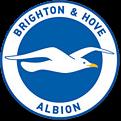 Brighton and Hove Albion Logo
